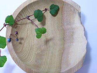 ケヤキの木の欠けたお皿 の画像