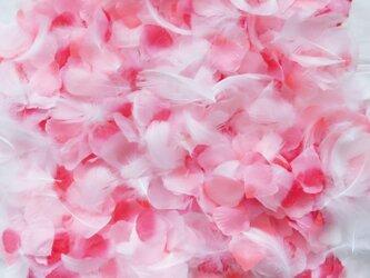 送料無料☆3色MIX フラワーシャワー1000枚 フェザー入り ふんわりピンク フラワーペタル 造花 パーティー ウェデの画像