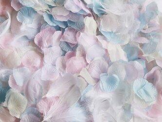 送料無料☆3色MIX フラワーシャワー1000枚 フェザー入り 天使のパステル フラワーペタル 造花 パーティー ウェデの画像