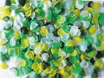 フラワーシャワー1000枚 リーフガーデンMIX! 5色 カラフル セット 緑 グリーン 水色 白 ホワイト黄色 イエロの画像