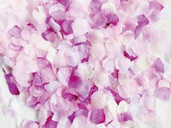 送料無料☆5色MIX セット フラワーシャワー1000枚 ラプンツェル 紫 たっぷりフラワーペタル 造花 ウェディングの画像