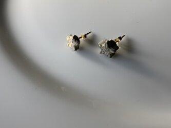 ウミユリの化石の14kgfピアスの画像