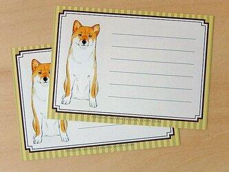 メッセージカード 柴犬の画像