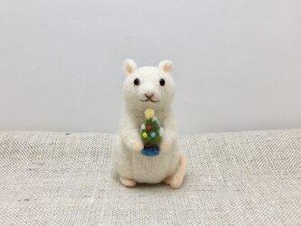 ネズミのクリスマス(ツリー)の画像