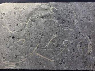 手漉き耳付き雲龍紙 粗目楮入り水玉の画像