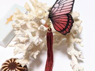 蝶のピアス(大)マダラ系の画像