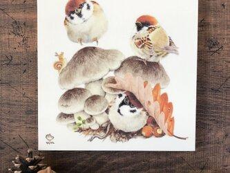 「霜月のスズメたち」18x18cm パネル作品の画像