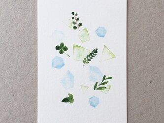 葉っぱのポストカード 5枚組の画像