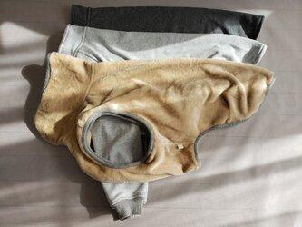 犬服 オーダーメイド品:I様ワイマラナー用長袖ラグランTシャツ&ウィンターウェアの画像