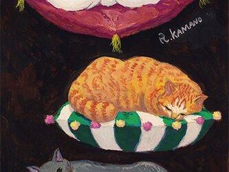 カマノレイコ オリジナル猫ポストカード「ふかふか」2枚セットの画像