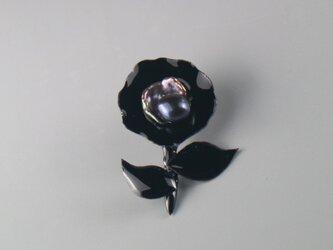 藍真珠のお花の画像