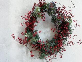 野バラの実のクリスマスリースの画像