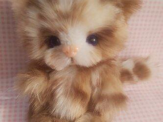 ふわふわぬいぐるみ☆子猫☆Baby catの画像