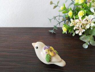 花小鳥/小(陶)白ジュウシマツ・ビオラの画像