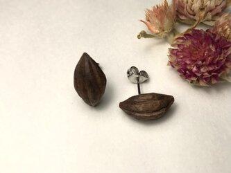 木彫ピアス(種、ブラックウォールナット)の画像