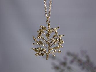 Brass necklace「Grove」の画像