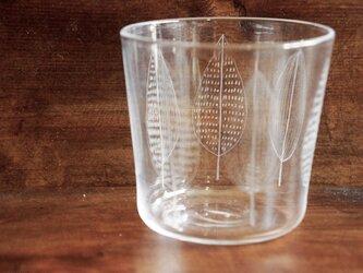 leaf-glassの画像