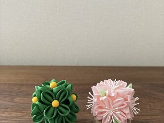 桜橘 (一) 雛飾り の画像