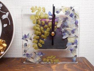 flowerclock 藤の花の画像