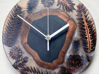 木の実のレジン時計_C11の画像