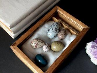 擬卵の入った小箱A。の画像