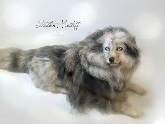 【受注制作】チベタンマスティフ 東方神犬 大型 最古 犬 羊毛フェルト アートドールの画像