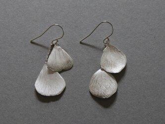 Foetidas pierced earring Silverの画像
