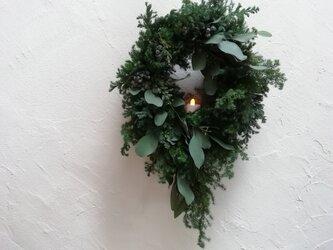 針葉樹とユーカリのクリスマスwreathの画像