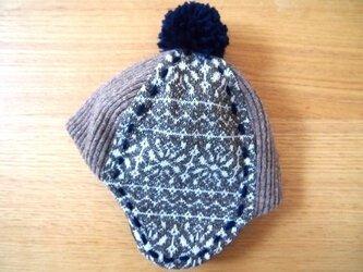 お出かけニット帽子(冬の草原)の画像
