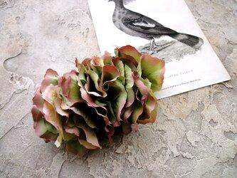 ラナンキュラスのバレッタ ■ 秋色 シックカラー ■ グリーンレッドの画像