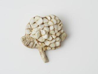 アナベル磁土ブローチの画像