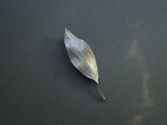 Leaf brooch Silver925の画像