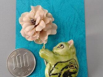 ねこさーじゅ 雨蛙模様の画像