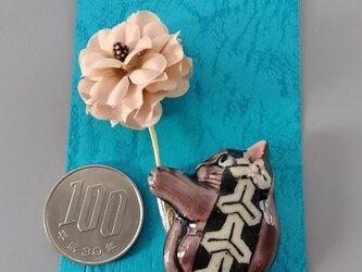 ねこさーじゅ 亀甲模様の画像