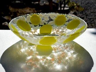黄色気分のサラダボールの画像