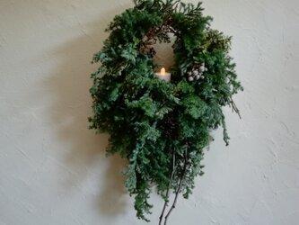 森のwreath-枝の画像