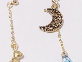 月夜と兎のピアスの画像