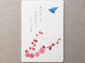 梅の年賀状 あけましておめでとう 5枚組の画像