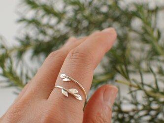 ツルのリング:silver925の画像