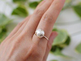 つぼみのリング:silver925の画像