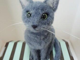 ロシアンブルー 猫 羊毛フェルトの画像
