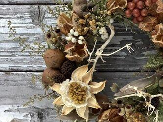 atelier blugra八ヶ岳〜秋を集めたWreath2020の画像