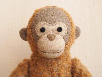 オランウータンの子の画像