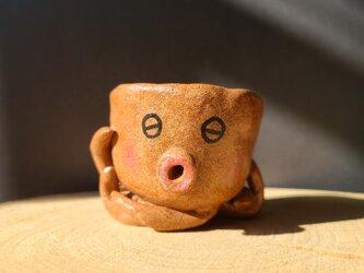 小さな植木鉢 蛸鉢さんの画像