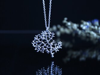Silver necklace「Recollection」の画像