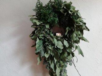 ユーカリの森のwreathの画像
