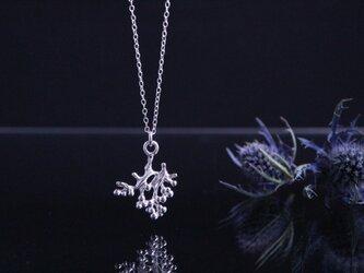 Silver necklace「Alone」の画像