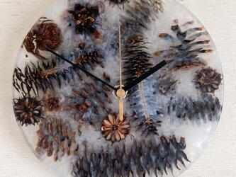 木の実のレジン時計_C16の画像