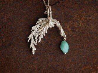 糸杉とアマゾナイトのネックレスの画像