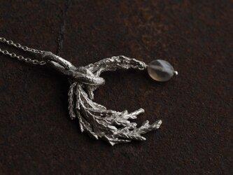 糸杉とスモーキークオーツのネックレスの画像